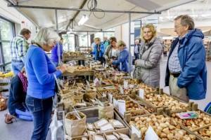 Op 6 en 7 oktober is er weer veel keuze tijdens de Bloembollenmarkt. © Keukenhof